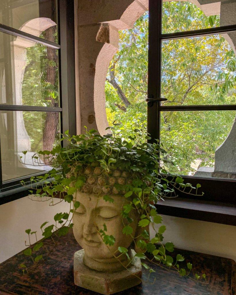 Buddha planter with pixie dixie ivy - J Dub By Design