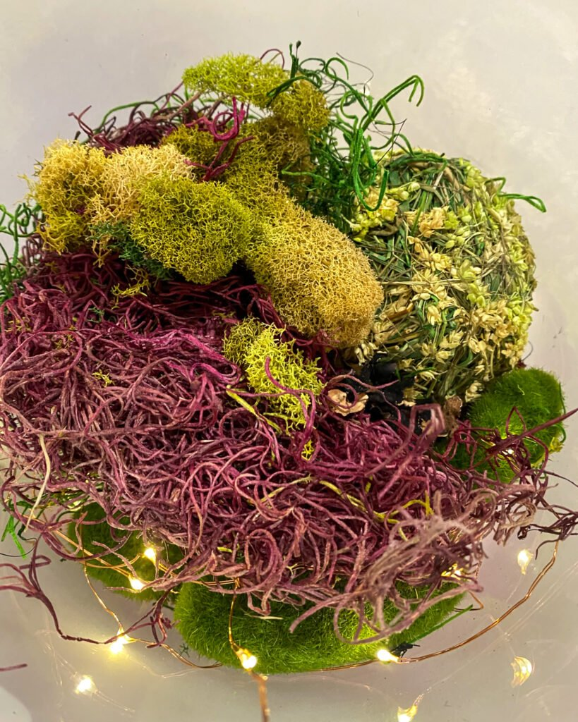 lights and reindeer moss - J Dub By Design