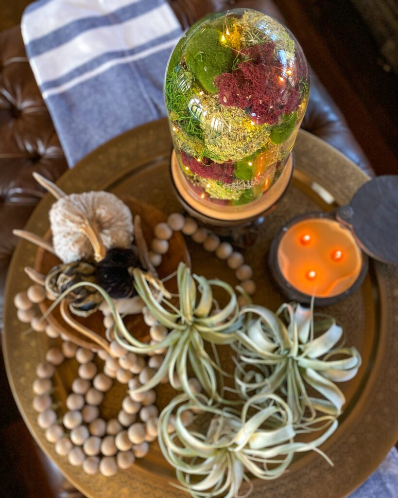 overhead view of cloche with air plants wood beads and pumpkins - J Dub By Design