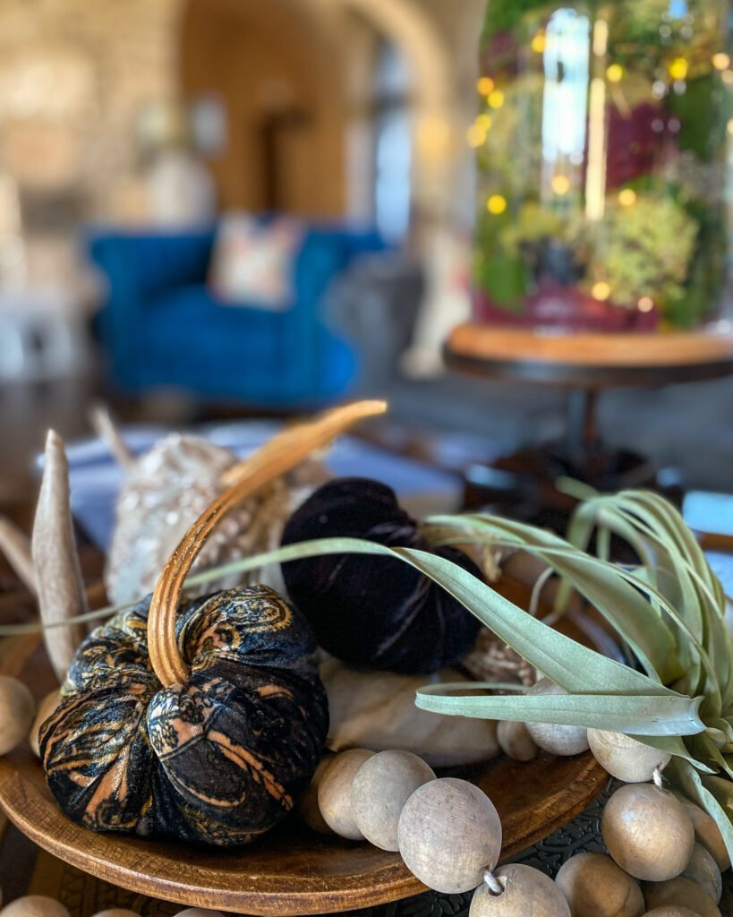 pumpkins and air plants with wood beads and cloche - J Dub By Design