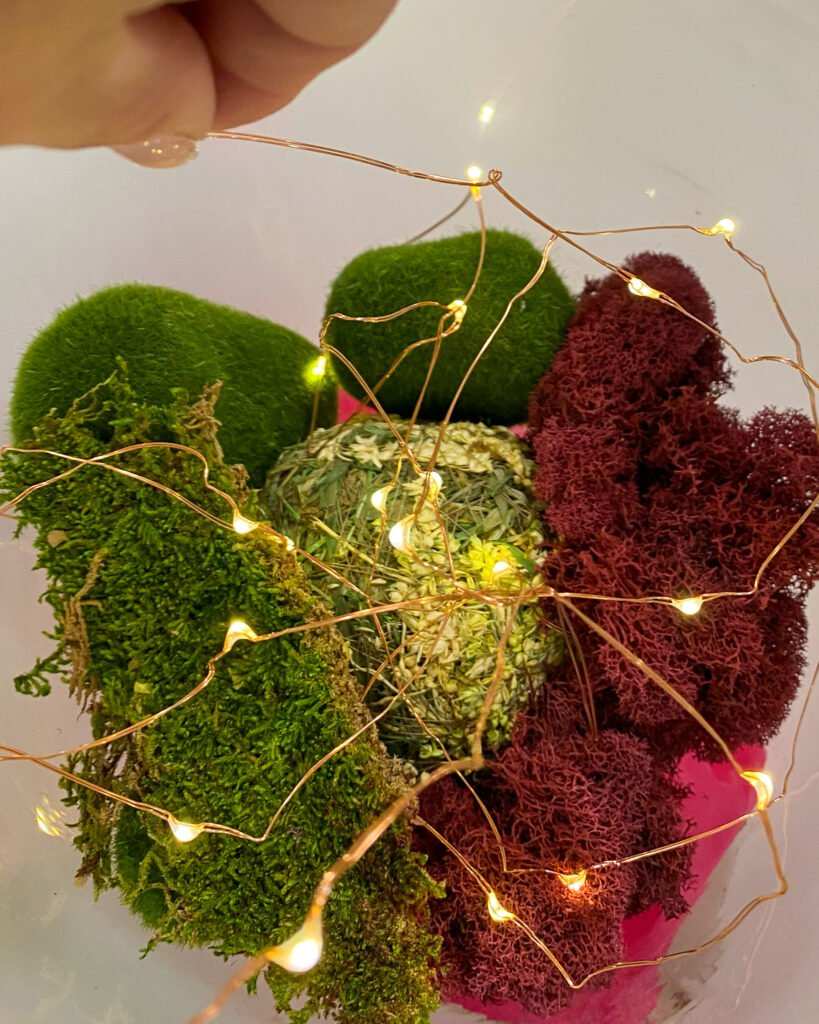 layering reindeer moss and lights in cloche - J Dub By Design