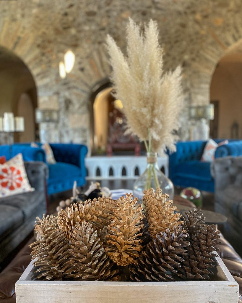 bleached pinecones and pampas grass - J Dub By Design