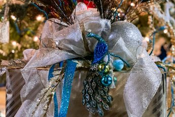 peacock wrapped Christmas gift idea - J Dub By Design