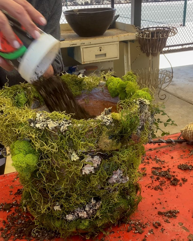 adding potting soil to moss covered pot - J Dub By Design™