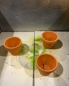small terra cotta pots sitting in cardboard box - J Dub By Design™