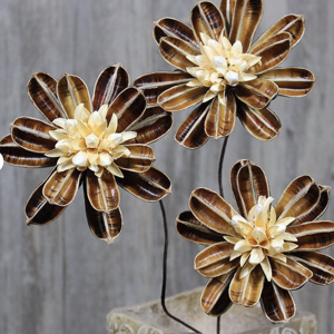 dried floral lotus pods - J Dub By Design™