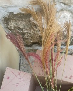 dye pampas grass drying out in cardboard box - J Dub By Design™