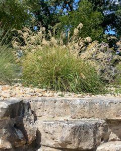 miscanthus grass in a rock garden - J Dub By Design™