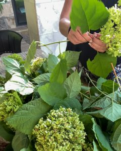 removing leaves from hydrangea blooms - J Dub By Design™